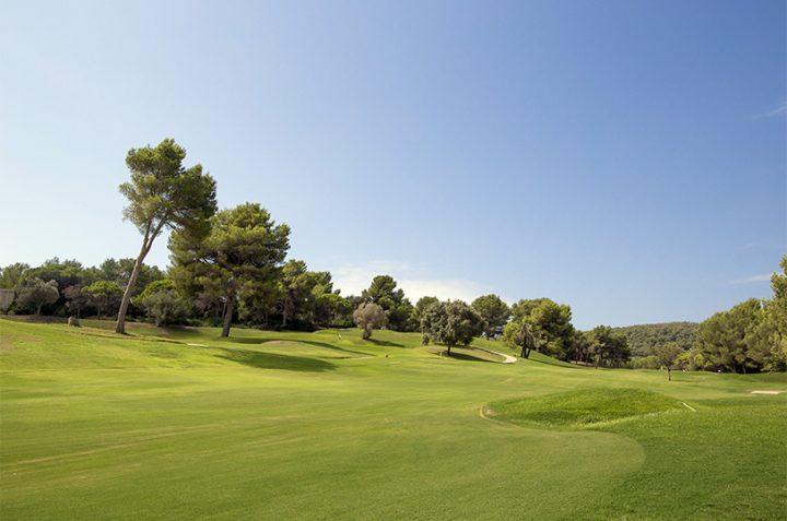 Estado actual del campo en Golf Ibiza